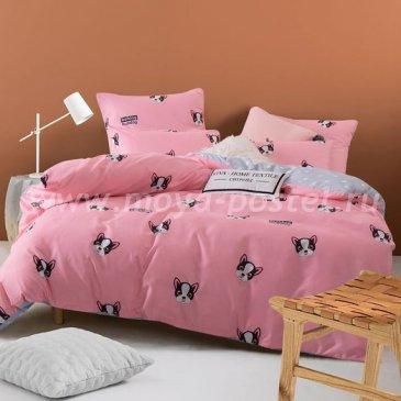 Постельное белье Модное на резинке CLR029 в интернет-магазине Моя постель
