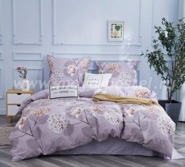 Комплект постельного белья Сатин C346 в интернет-магазине Моя постель