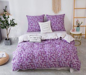 Комплект постельного белья Сатин C353 (евро, 50х70) в интернет-магазине Моя постель