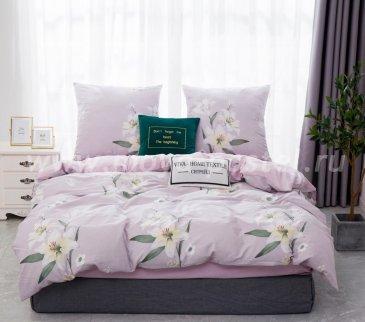 Комплект постельного белья Сатин C359 в интернет-магазине Моя постель
