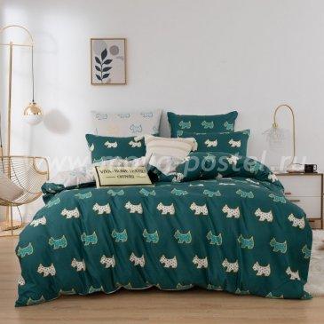 Постельное белье Модное на резинке CLR066 в интернет-магазине Моя постель
