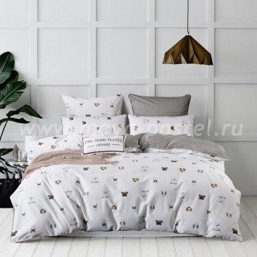 Комплект постельного белья Сатин Элитный на резинке CPLR020 в интернет-магазине Моя постель