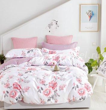 Постельное белье Twill TPIG3-905 евро 2 наволочки в ПВХ в интернет-магазине Моя постель
