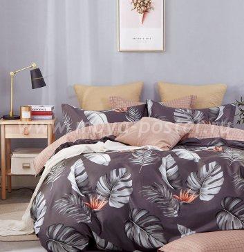 Постельное белье Twill TPIG3-912 евро 2 наволочки в ПВХ в интернет-магазине Моя постель