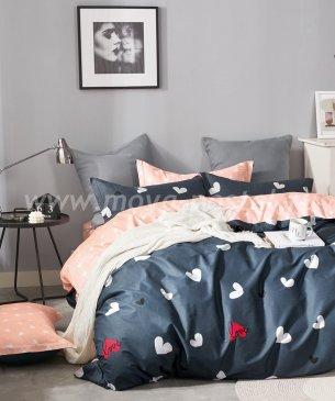 Постельное белье Twill TPIG3-1018 евро 2 наволочки в ПВХ в интернет-магазине Моя постель