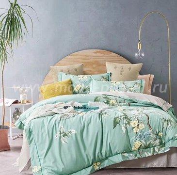 Постельное белье Tango Novella TS01-X128 1,5-спальный 2 наволочки в интернет-магазине Моя постель