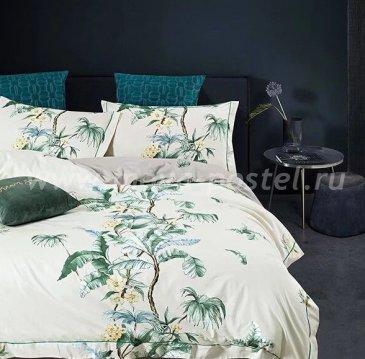 Постельное белье Tango Novella TS01-X102 1,5-спальный 2 наволочки в интернет-магазине Моя постель