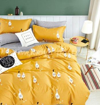 Постельное белье Tango Novella TS01-X111 1,5-спальный 2 наволочки в интернет-магазине Моя постель