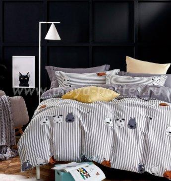 Постельное белье Tango Novella TS01-X112 1,5-спальный 2 наволочки в интернет-магазине Моя постель
