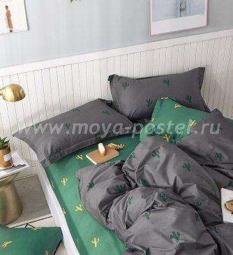 Постельное белье Tango Novella TS04-X98 евро 4 наволочки в интернет-магазине Моя постель