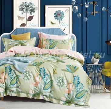 Постельное белье Tango Novella евро 4 наволочки в интернет-магазине Моя постель