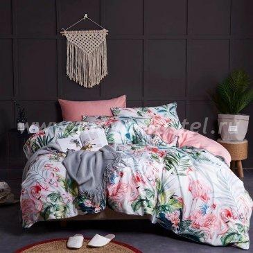 Комплект постельного белья Сатин Премиум на резинке CPAR005 в интернет-магазине Моя постель