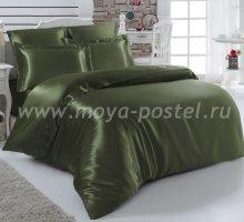 """Постельное белье шелк """"KARNA"""" ARIN (Евро) 50x70*2 70x70*2 (зеленое) в интернет-магазине Моя постель"""