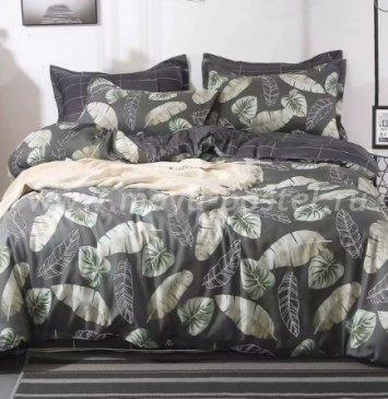 КПБ Dream Fly DF01-46 1,5 спальный Микросатин в интернет-магазине Моя постель