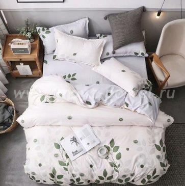 Постельное белье Dream Fly DF03-68 Евро 2 наволочки Микросатин в интернет-магазине Моя постель