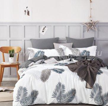 Постельное белье Twill TPIG3-783 евро 2 наволочки в ПВХ в интернет-магазине Моя постель