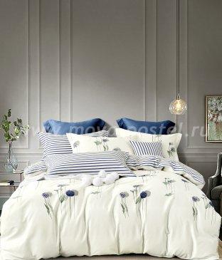 Постельное белье Twill TPIG6-1037 евро 4 наволочки в интернет-магазине Моя постель