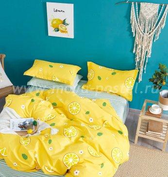 Постельное белье Twill TPIG6-1140 евро 4 наволочки в интернет-магазине Моя постель