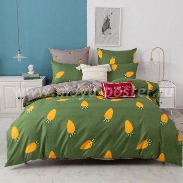 Постельное белье Модное на резинке CLR080 в интернет-магазине Моя постель