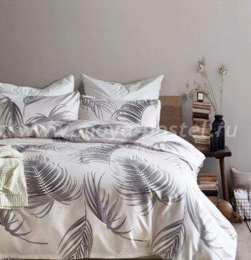 Постельное белье Dream Fly DF01-58 1,5 спальный Микросатин в интернет-магазине Моя постель