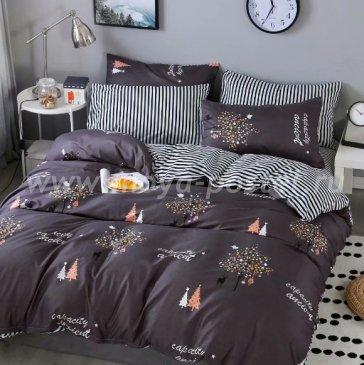 Постельное белье Dream Fly DF03-55 Евро 2 наволочки Микросатин в интернет-магазине Моя постель