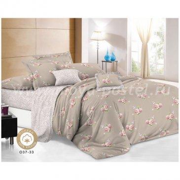 Поплин 037-33   (Семейный) в интернет-магазине Моя постель