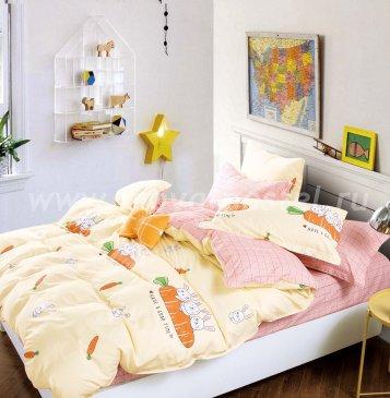 Постельное белье Twill TPIG2-1135-50 2 спальный в интернет-магазине Моя постель