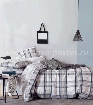 Постельное белье Twill TPIG2-1167-50 двуспальное в интернет-магазине Моя постель