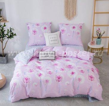 Комплект постельного белья Сатин C367 в интернет-магазине Моя постель