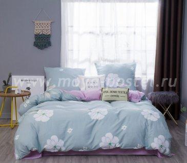 Комплект постельного белья Сатин C374 в интернет-магазине Моя постель