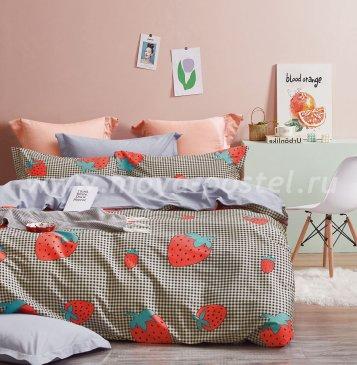 Постельное белье Twill TPIG6-1207 евро 4 наволочки в интернет-магазине Моя постель