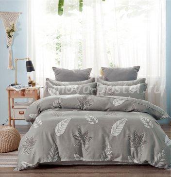 Постельное белье Twill TPIG2-1198-50 двуспальное в интернет-магазине Моя постель