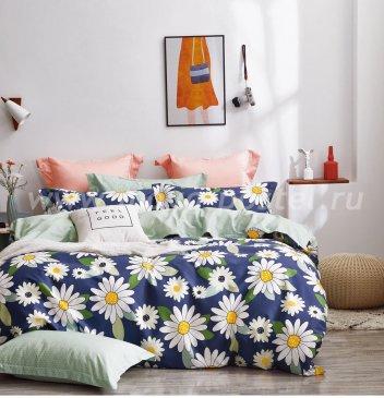 Постельное белье Twill TPIG2-1206-70 двуспальное в интернет-магазине Моя постель
