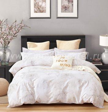 Постельное белье Twill TPIG5-1183 семейное в интернет-магазине Моя постель