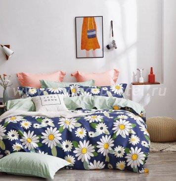 Постельное белье Twill TPIG2-1206-50 2 спальный в интернет-магазине Моя постель