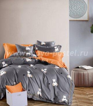 Кпб Египетский хлопок TIS04-207 1.5-спальный в интернет-магазине Моя постель