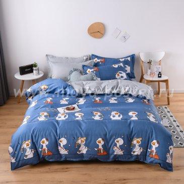 КПБ Dream Fly DF01-105 1,5 спальный в интернет-магазине Моя постель