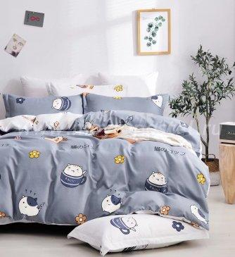 КПБ Dream Fly DF03-74 Евро 2 наволочки в интернет-магазине Моя постель