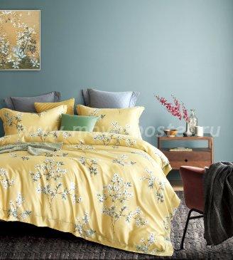 КПБ Tencel TT6-97 евро 4 наволочки в интернет-магазине Моя постель