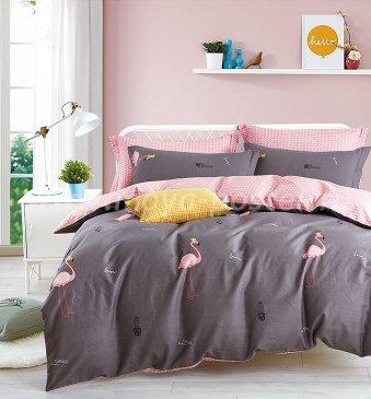 Постельное белье TPIG2-759-50 Twill 2 спальный в интернет-магазине Моя постель