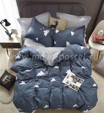 Постельное белье Twill TPIG2-777-70 двуспальное в интернет-магазине Моя постель