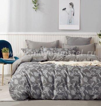 Постельное белье Twill TPIG5-684 семейное в интернет-магазине Моя постель