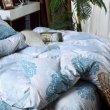 Комплект постельного белья Сатин C296 (полуторное 70*70) в интернет-магазине Моя постель - Фото 4